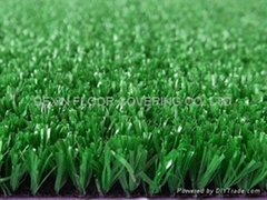 Leisure grass