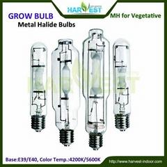 Greenhouse garden hydroponics lights MH