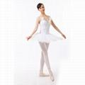 Adult classic ballet tutu