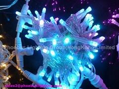 Led Christmas Twinkle Light