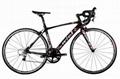 WIEL Carbon Road Bicycle B076