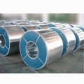 galvanized or galvalume steel coil