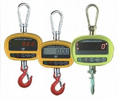2014 NEW cheapest and good quality digital crane scale