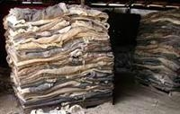 Wet and Dry salted cow hides 1