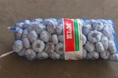 2013normal white garlic