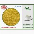 Yingte Puffing Millet powder 2