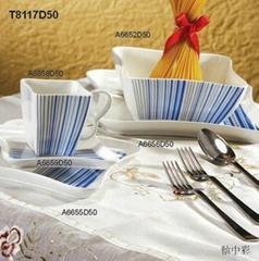 Color porcelain products