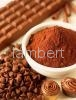 Wholesale cocoa powder