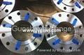 steel pipe flanges 2