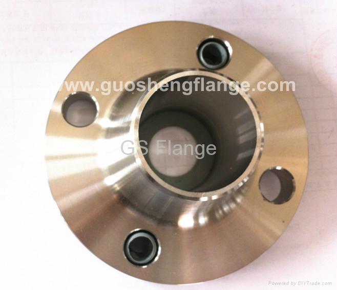 F304/F304L weld neck flange 1