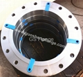 F316L plate flange with flat face