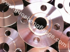 F904L Lap joint flange with flat face