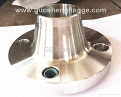 254SMO/F44 welding neck flanges