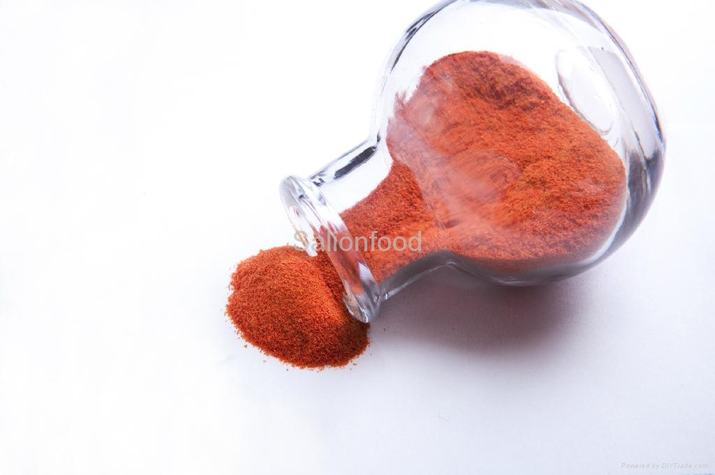 Tomato powder 3