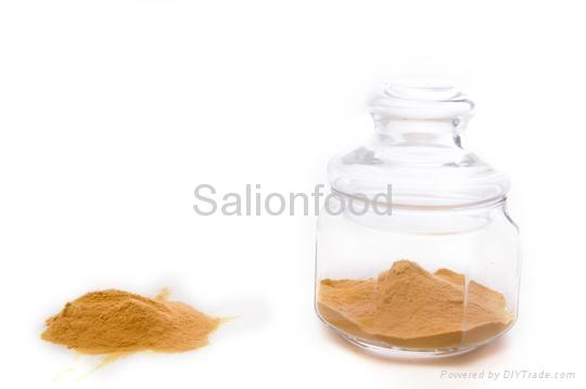 natural pickle powder 2