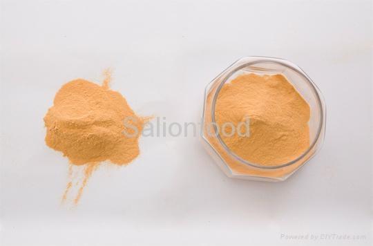 natural pickle powder 3
