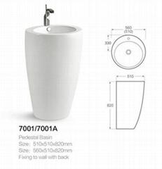 7001  Pedestal Basin
