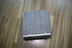 Auto evaporator
