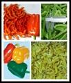 IQF pepper strips