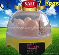 2013popular hot sale mini chicken eggs incubator