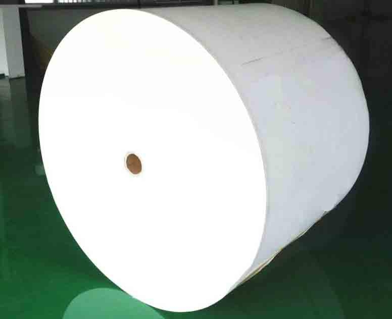 pe paper for disposable cup 2