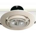 COB Downlight