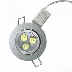 ceiling light for indoor usage