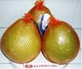 Fresh Pomelo Sale 1