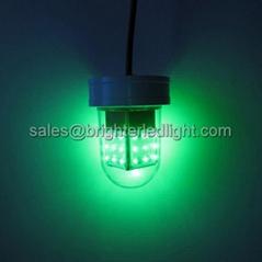 12V Deep Drop Underwater Green Glowing LED Fishing Light Dock Lamp Gigging Bait