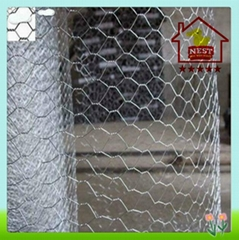 Hexagonal Wire Neting Galvanized