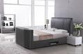 Modern Designs Leather Bed Designs TV
