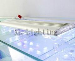 2013 new style 50w/60cm led aquarium light for marine life