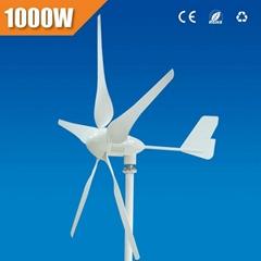 1000 w home using wind turbine