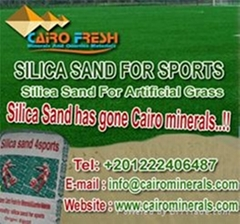 Well sieved  silica sand for Artificial turf  From Egypt