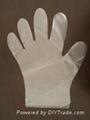 single use kitchen use PE glove   2