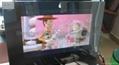19英寸浴室电视