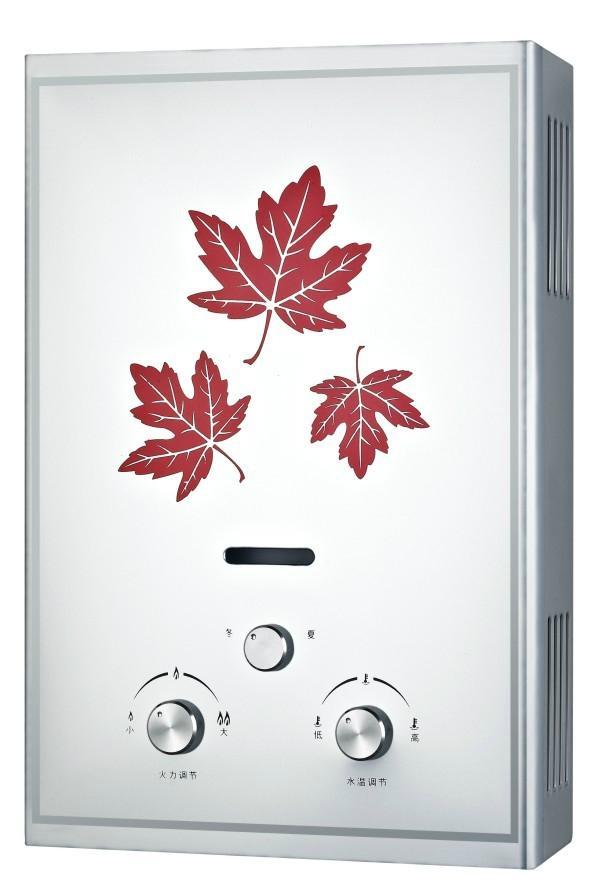 Flue Gas Water Heater  5