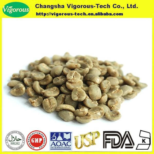 bulk green coffee beans extract powder  1