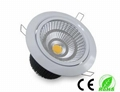 silverlight supplyCOB downlight LEDlight