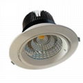 COB LED Ceiling Lamp