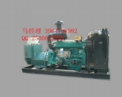 潍坊柴油发电机组200KW...