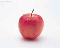 apple from Yantai China