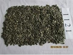 sunflower seeds1121