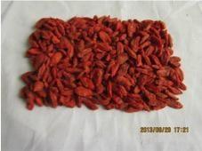 dried goji berry 280 grains/50g 1