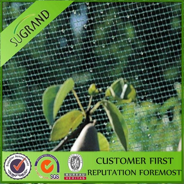 HDPE material with UV stabilizer anti insect net for vegetable 5