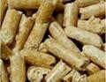 wood ring die pellets mill 2
