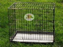 foldable dog cage/house