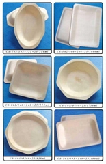 Disposable woodiness tableware