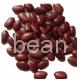 Dark red kidney beans crop 2013