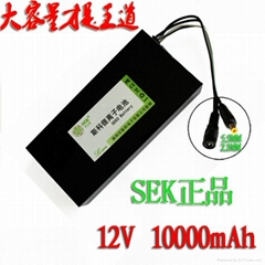 Manufacturers selling 48 v10ah large capacity lithium battery electric cars